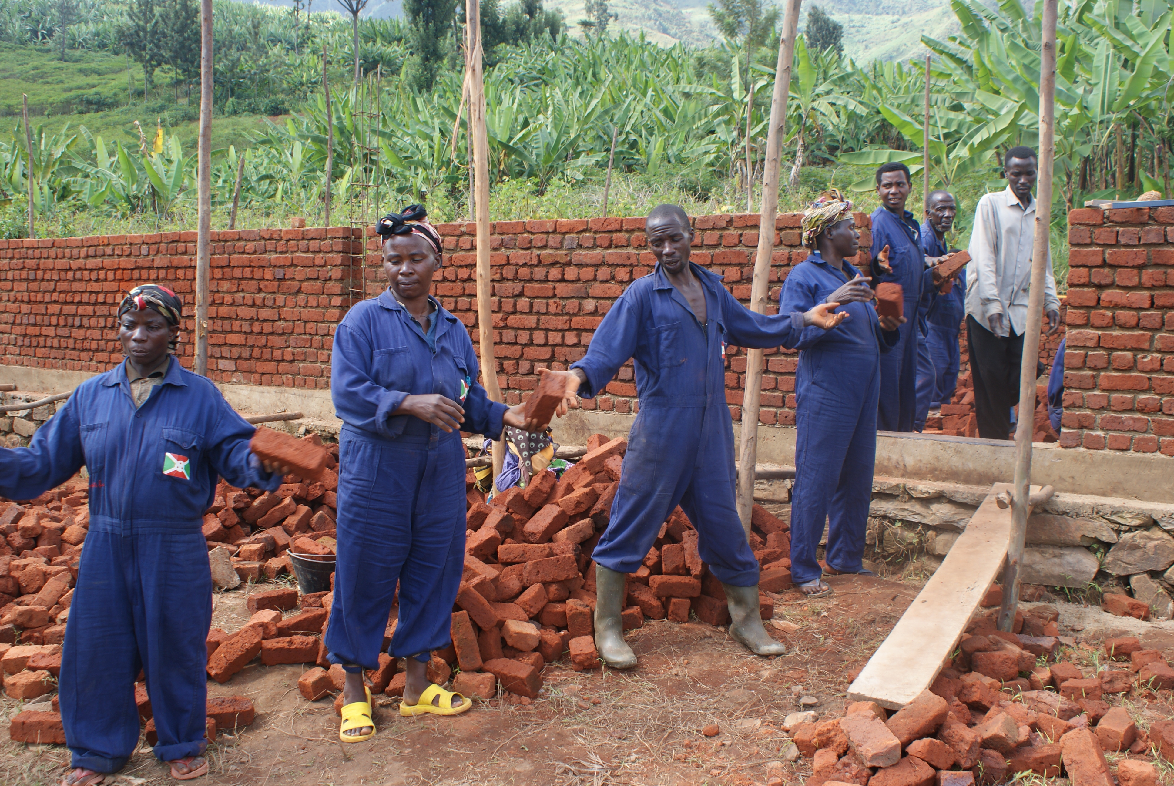 Shows an assembly line of people passing along bricks as they take part in a construction.