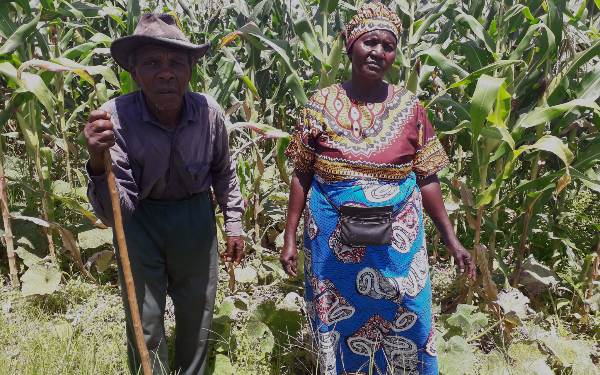 Local farmers, Dingane and Nancy Sithole stand proudly near a field of crops.