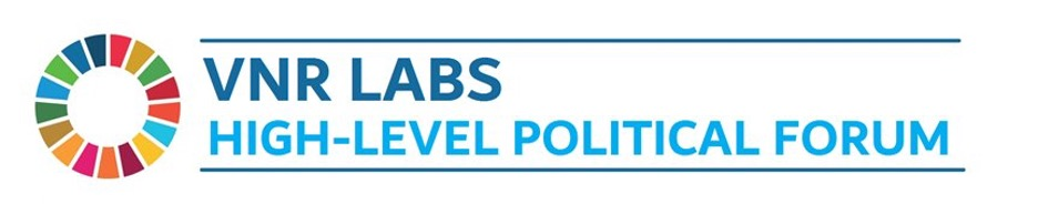 VNR Labs banner shows the SDG wheel with the title VNR Labs: High-level Political Forum