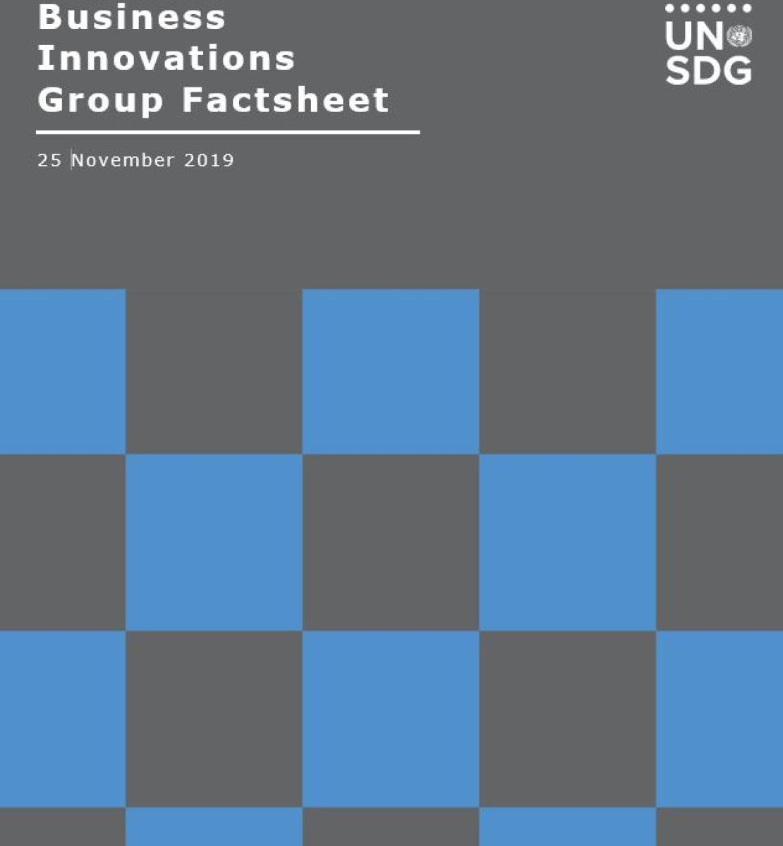 Business Innovations Group Factsheet cover shows the title against a solid background with a checkered pattern beneath.