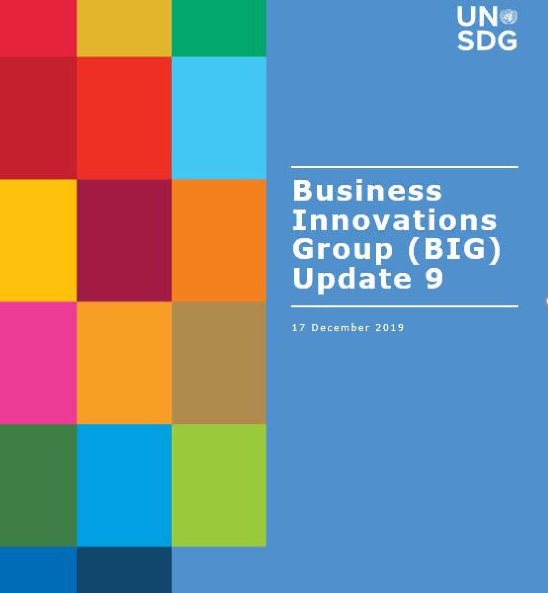 Shows the title, Business Innovations Group (BIG) Update 9 against a solid background next to a colour grid of rectangles to the left of it.