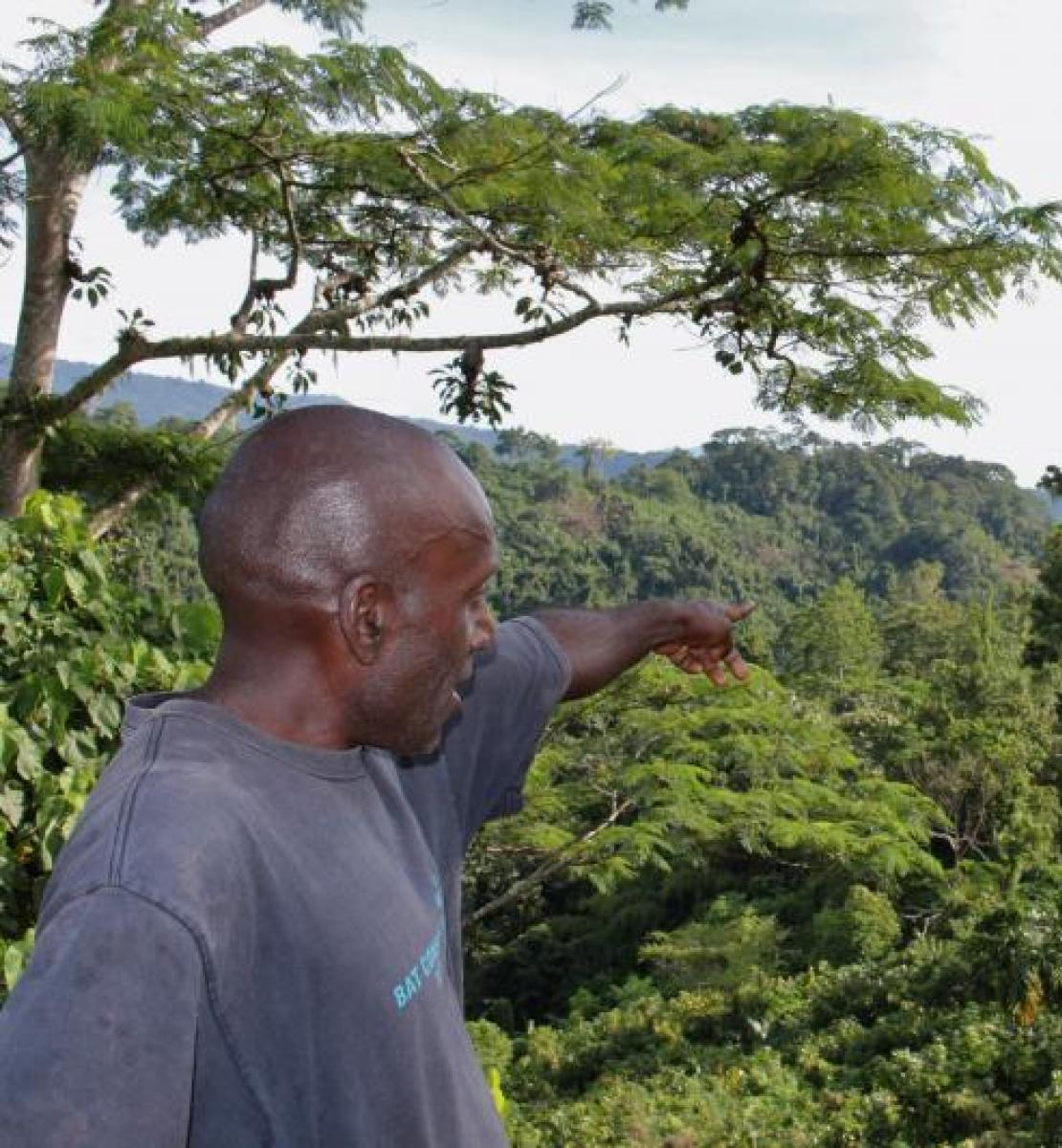 Man stands at the forefront of a lush green valley of trees and hills. He's shown pointing behind him towards some green mountains.