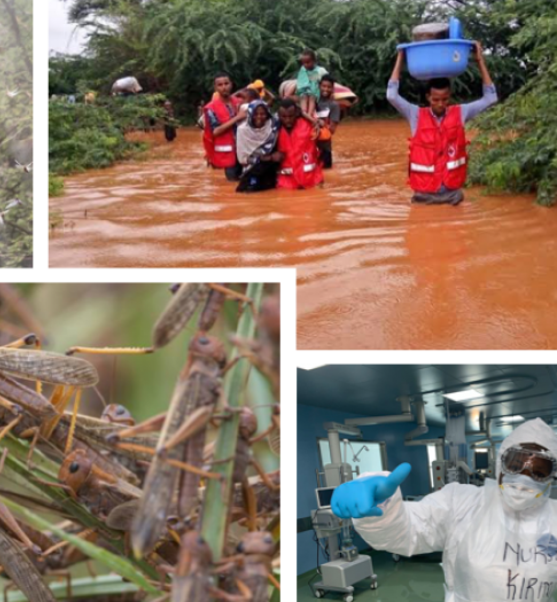 Kenya has gone through a series of unprecedented humanitarian triple crises of COVID19, Floods and Locust invasion.