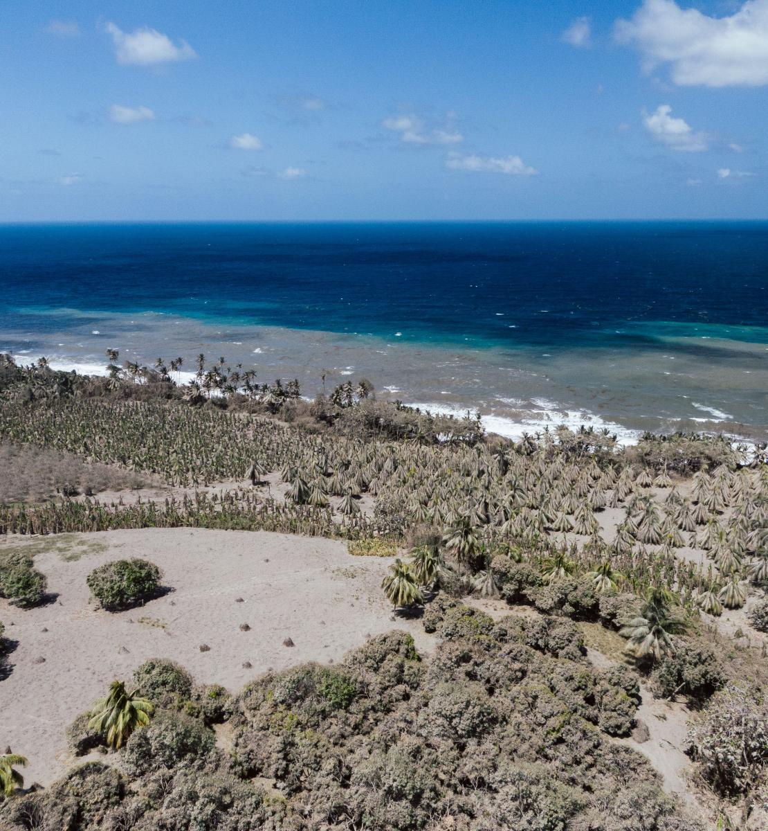 Photo aérienne d'un paysage où l'on aperçoit un rivage, du sable, des rochers et de la végétation.