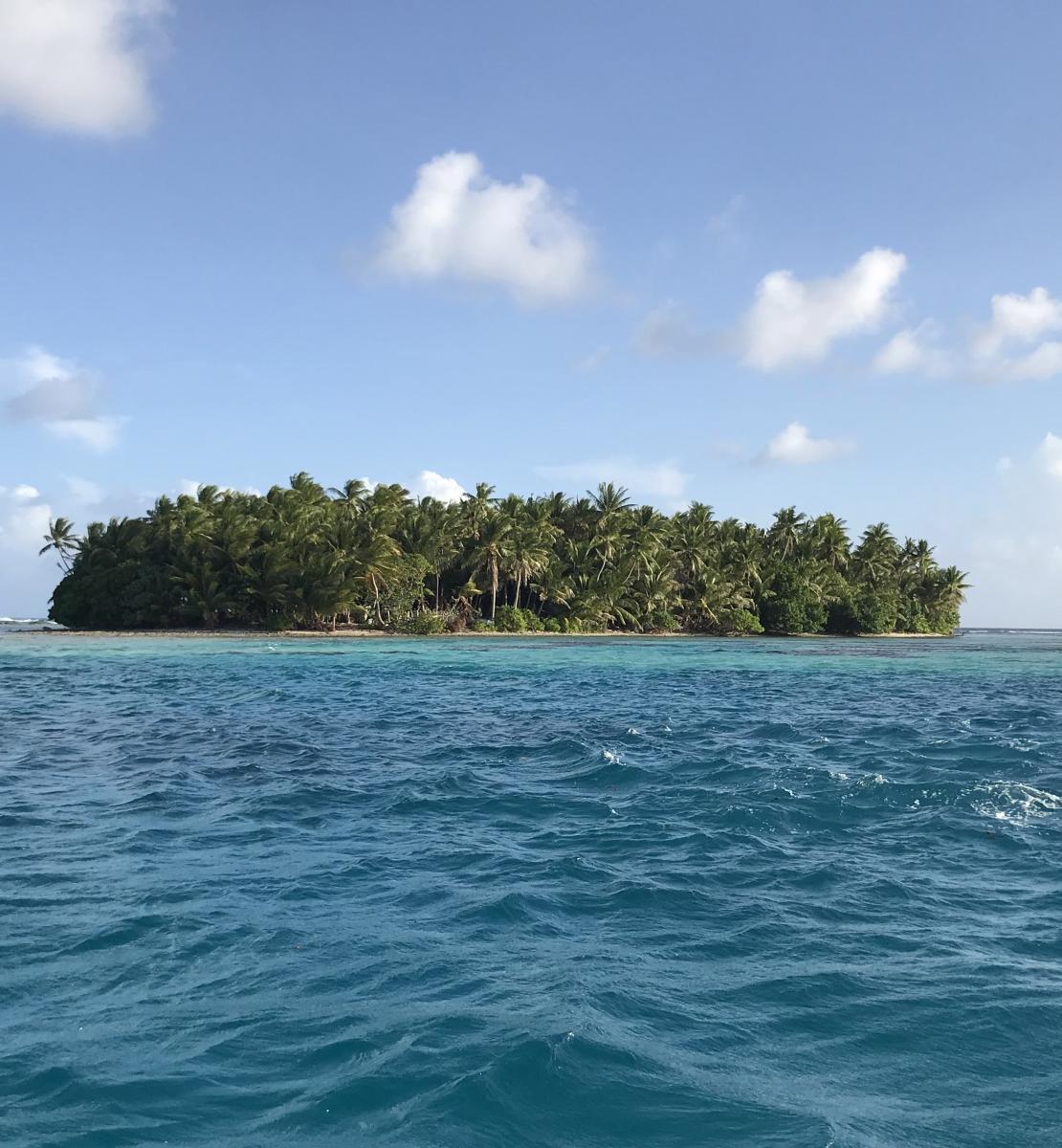 Una vista panorámica de la silueta de una isla llena, repleta de frondosos árboles, en el océano, en un día soleado.
