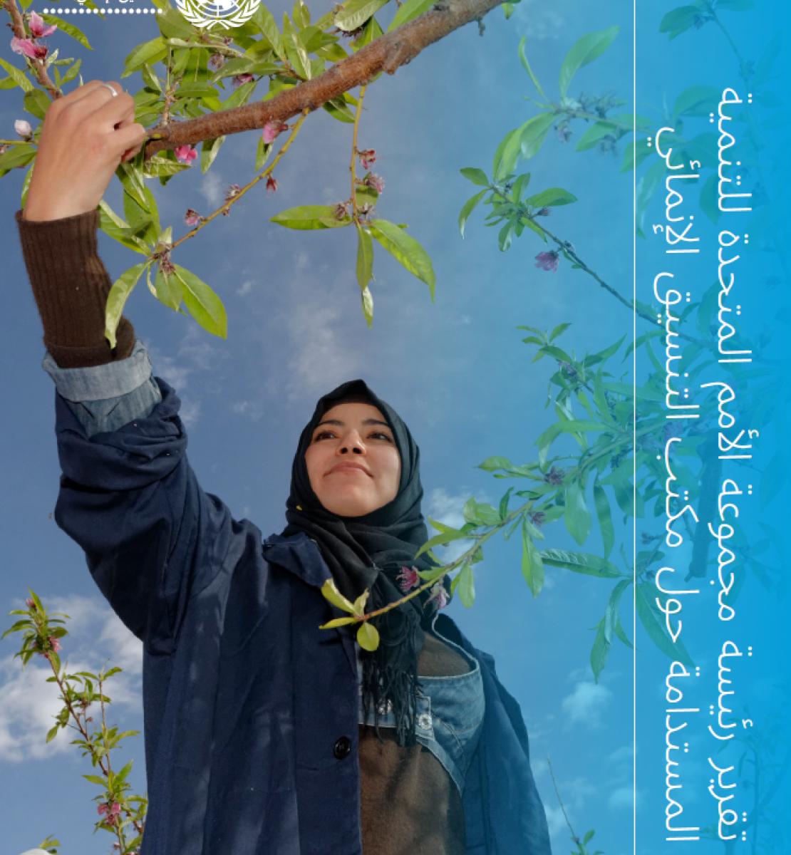 غلاف تقرير رئيسة مجموعة الأمم المتحدة للتنمية المستدامة حول مكتب التنسيق الإنمائي