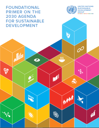 Cover shows title placed on the top left of the document, displayed above colourful SDG building blocks, several of which contain the SDG logos.