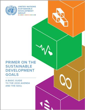 Cover shows SDG blocks on the cover with the title Primer on the Sustainable Development Goals: A Basic Guide to the 2030 Agenda and the SDGs