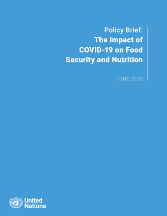 "Cover shows the title ""Policy Brief: The Impact of COVID-19 on Food Security and Nutrition"" against a solid blue background with the UN emblem on the lower left side."