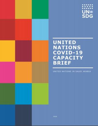 Cover of publication shows colorful blocks with United Nations COVID-19 Capacity Brief