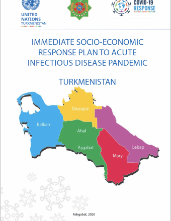 "Cover shows the title, ""Immediate Socio-Economic Response Plan to Acute Infectious Disease Pandemic for Turkmenistan"" above the Turkmenistan map."